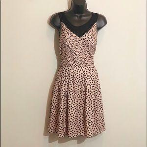 LC Lauren Conrad 6 cream black polka dot dress